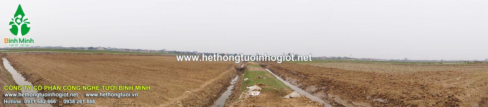 Dự án 5 ha cây nông nghiệp sở KHCN tỉnh Ninh Binh